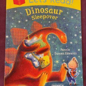 """""""Dinosaur Sleepover""""  książka dla dzieci  A140"""